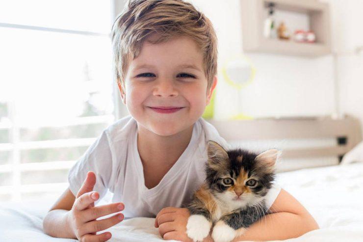 bimbo con gattino
