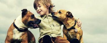Cani bambini Mammastobene.com