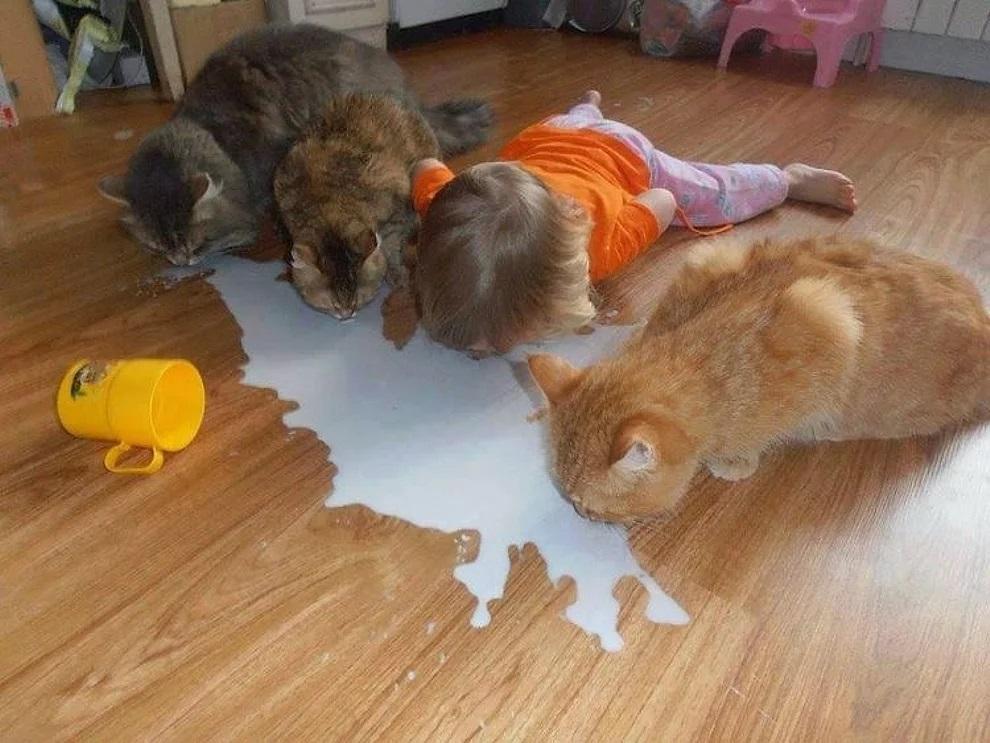 Bimba beve il latte dal pavimento