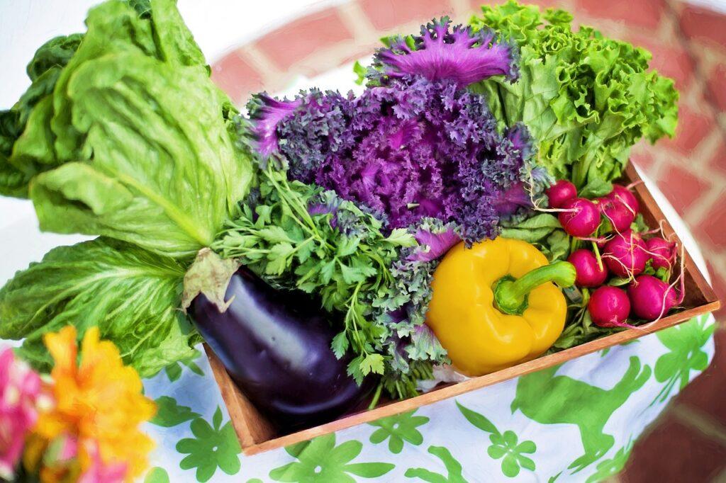 verdure ai bambini