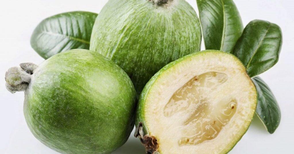 guava di montagna Mammastobene.com