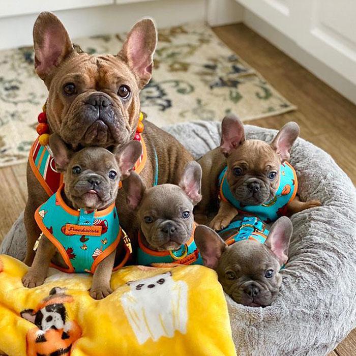 Rowena con i suoi bambini