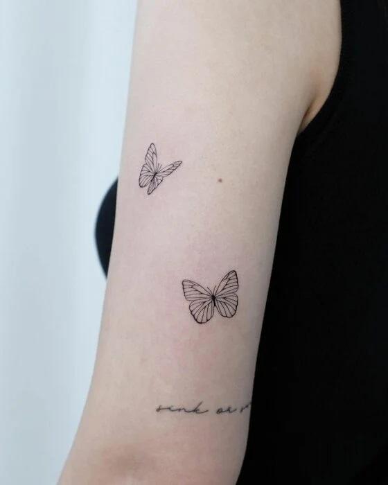 ali delle farfalle