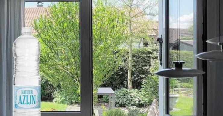 cospargere di aceto le finestre