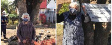 Donna di 90 anni si aggrappa a un albero