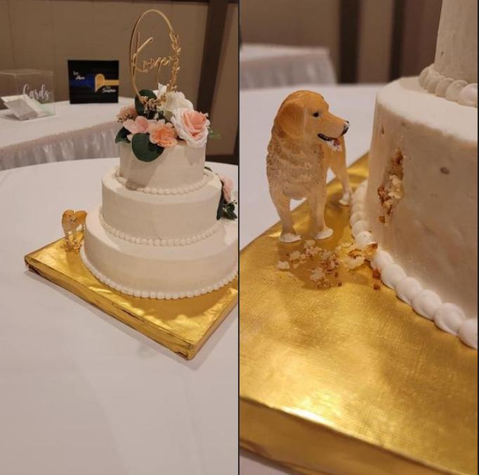 La torta nuziale devastata